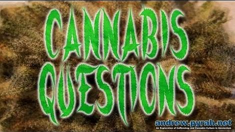 1 WHAT IS CANNABIS (MARIJUANA, WEED, GANJA, POT)? #CannabisQuestions