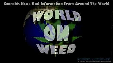 Sneak Peak - WORLD ON WEED - Intro and Outro