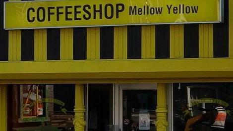 EPISODE 6 - Coffeeshop Mellow Yellow [ Amsterdam Coffeeshop Tour Season 2 ]