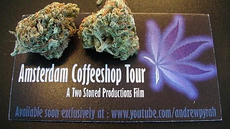 New Amsterdam Weed Review Coming Soon!
