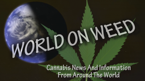 World on Weed - Cannabis News and Information from around the World