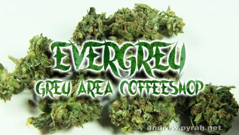 EVERGREY Grey Area Coffeeshop - Amsterdam Weed Review 2016