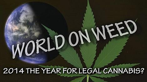 Is 2014 the year for Cannabis Legalization? Legal Marijuana? WORLD ON WEED Cannabis News and Information