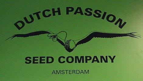 Dutch Passion CANNABIS Seed Company Amsterdam