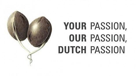 Dutch Passion Seed Companys Blog Launched Today!!