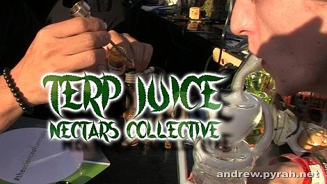 Nectars Collective TERP JUICE Review - Amsterdam Weed Review in California SoCal Cannabis Cup 2015