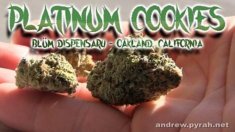 PLATINUM COOKIES Blüm MMJ Dispensary Oakland - Amsterdam Weed Review in California 2015