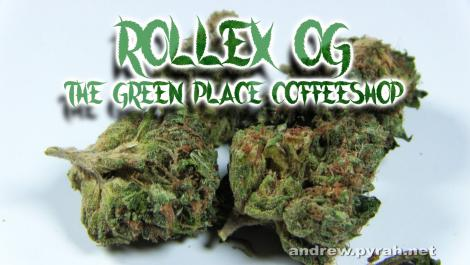 ROLLEX OG KUSH (Devils Harvest) The Green Place Coffeeshop - Amsterdam Weed Review 2016