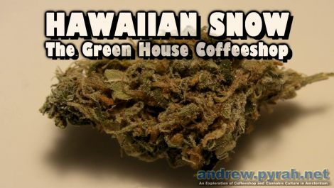 HAWAIIAN SNOW The Green House Coffeeshop - Amsterdam Weed Review