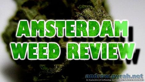 LA WOMAN Voyagers Coffeeshop (DNA Genetics) - Mini Amsterdam Weed Review